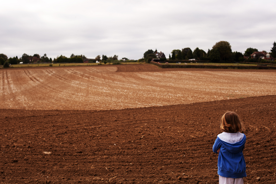 Looking up at the newly planted fields