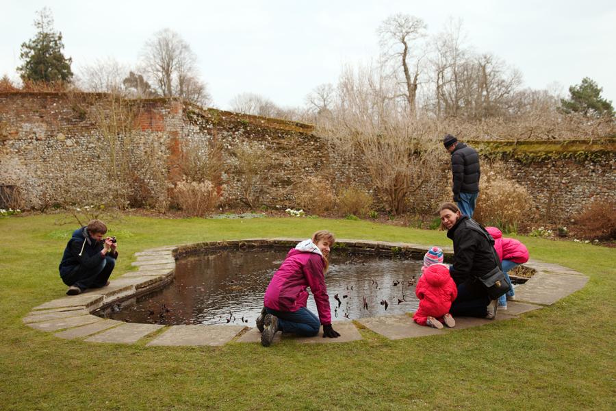 Gathered around the pond