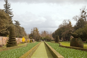 Looking down the Long Garden