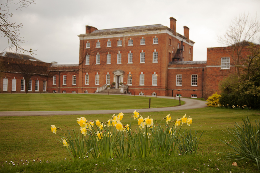 Daffodils outside the front of the College
