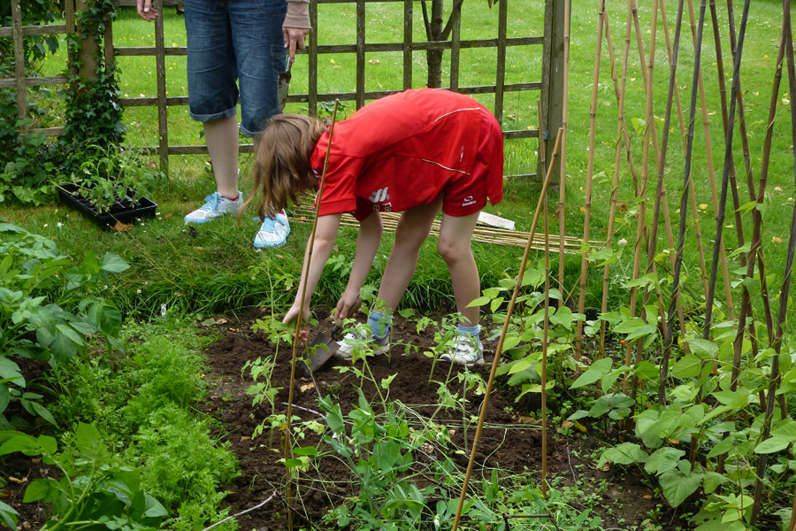 Rebekah planting the tomatoes